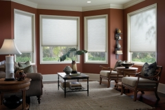 Prism Honeycomb Shades - Living Room