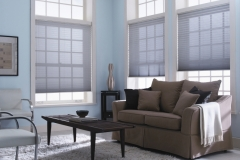 Prism Pleated Shades - I Got The Blues