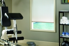 Prism Pleated Shades - Exercise Room