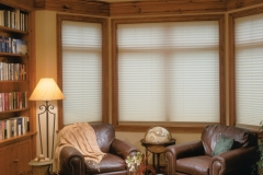 Prism Pleated Shades - Library