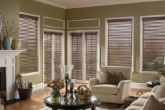 Wood Blinds - Green Living Room